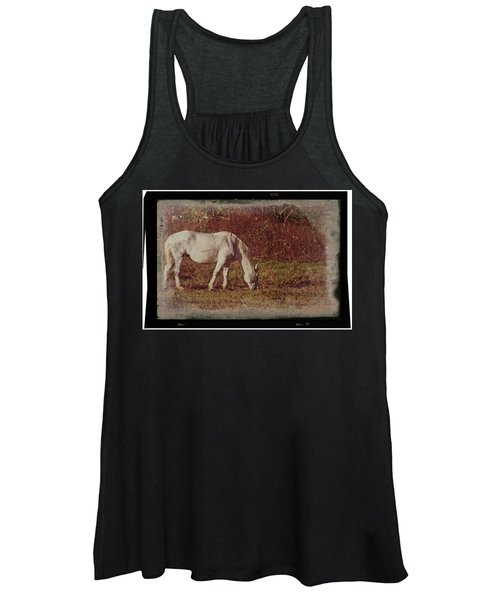 Horse Grazing Women's Tank Top