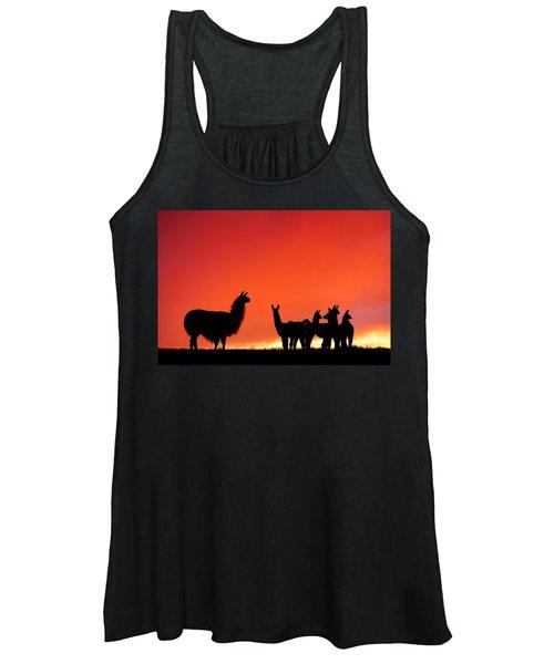 Red Llama Sunset 2 Women's Tank Top