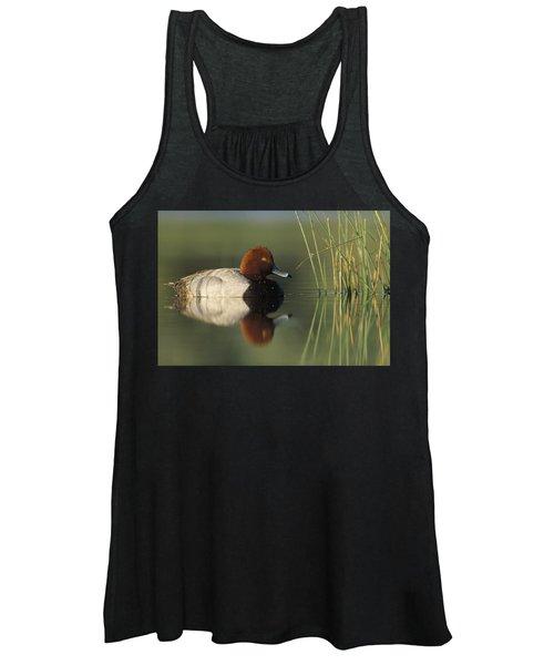 Redhead Duck Aythya Americana Male Women's Tank Top