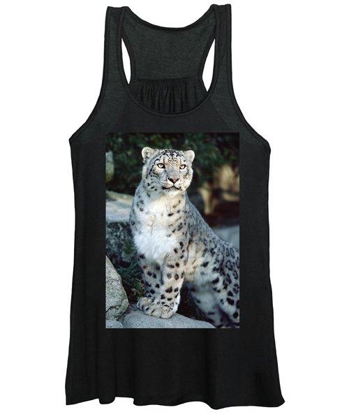 Snow Leopard Uncia Uncia Portrait Women's Tank Top
