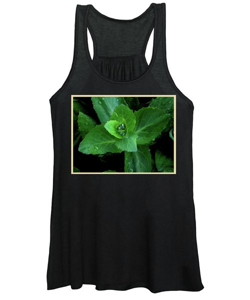 Succulent After The Rain  Women's Tank Top