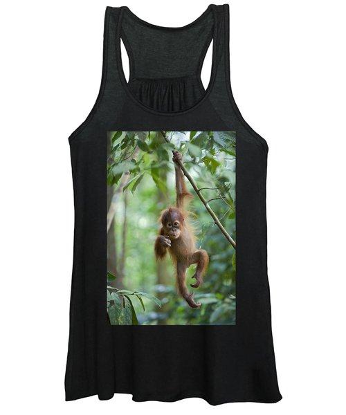 Sumatran Orangutan Pongo Abelii One Women's Tank Top