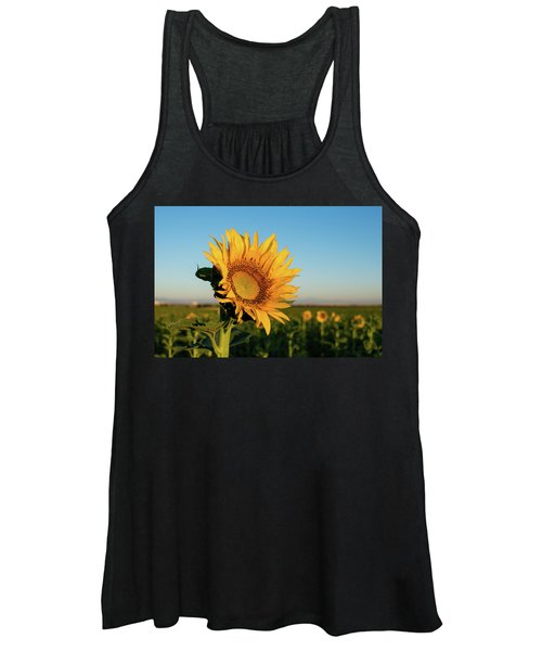 Sunflowers At Sunrise 2 Women's Tank Top