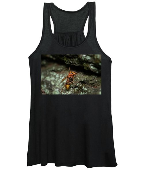 A European Hornet Sitting On A Tree Women's Tank Top
