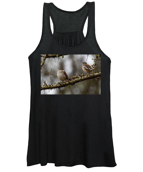 Black-crowned Tchagra And White-browed Scrub-robin Women's Tank Top