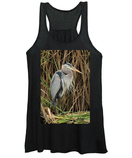 Great Blue Heron On Padre Island Women's Tank Top
