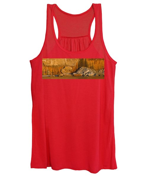 Pictured Rocks Near A Lake, Pictured Women's Tank Top