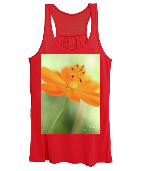 A Fair Lady Of The Plains Women's Tank Top