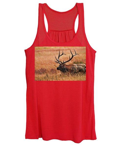 Bull Elk In A Field Women's Tank Top