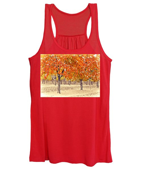 A Touch Of Winter Women's Tank Top