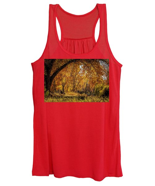 Bench With Autumn Leaves  Women's Tank Top