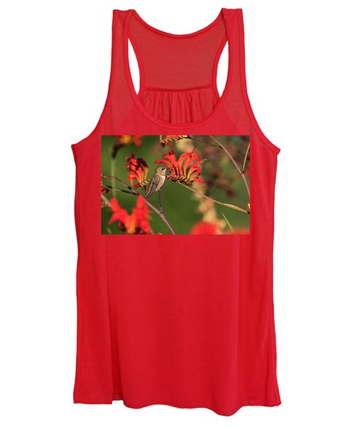 Female Rufous Hummingbird At Rest Women's Tank Top