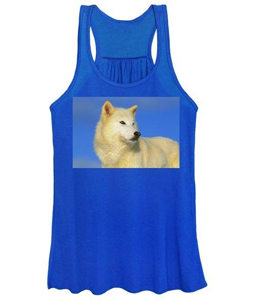 Arctic Wolf Canis Lupus Portrait Women's Tank Top