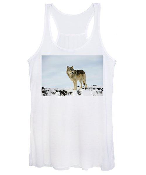Wolf In Winter Women's Tank Top