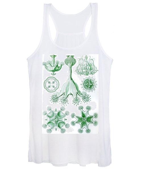 A Collection Of Stauromedusae Women's Tank Top