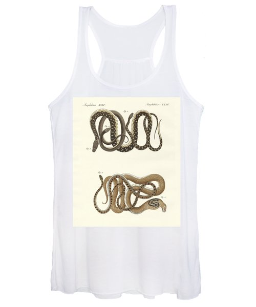 Different Kinds Of Foreign Colubrids Women's Tank Top
