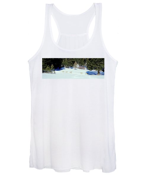 Gray Wolves Canis Lupus Running Women's Tank Top