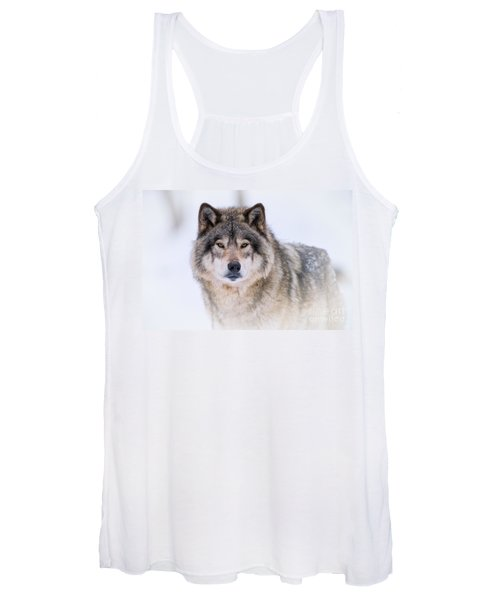 Timber Wolf Pictures 256 Women's Tank Top