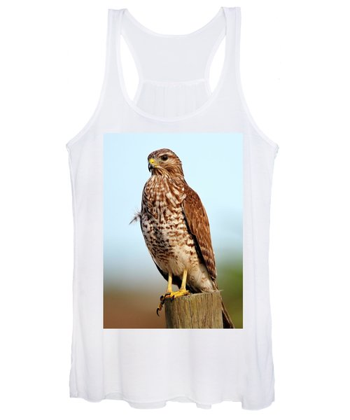 Portrait Of A Red Shouldered Hawk Women's Tank Top