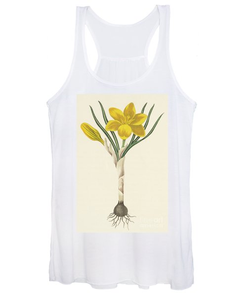 Common Yellow Crocus Women's Tank Top
