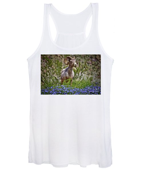 Blooms And Bighorn In Anza Borrego Desert State Park  Women's Tank Top