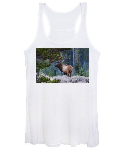 Bull Elk In Forest Women's Tank Top