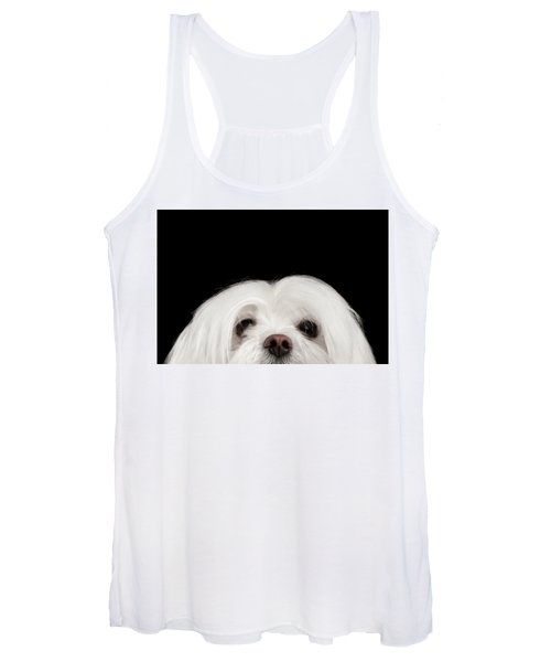 Closeup Nosey White Maltese Dog Looking In Camera Isolated On Black Background Women's Tank Top