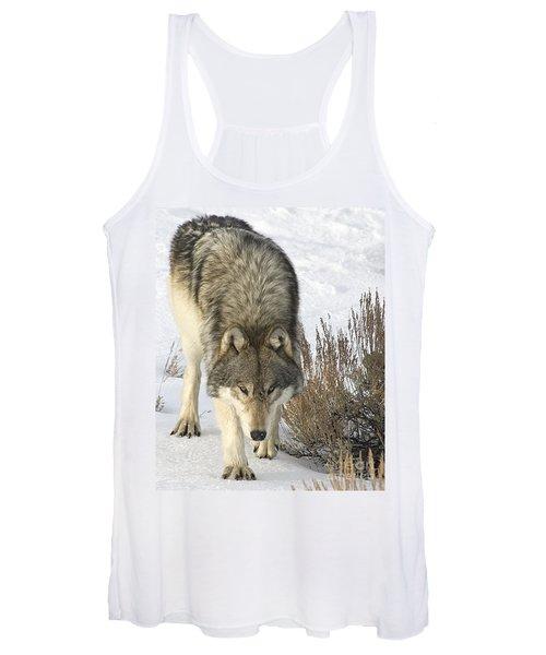 Gray Wolf Women's Tank Top