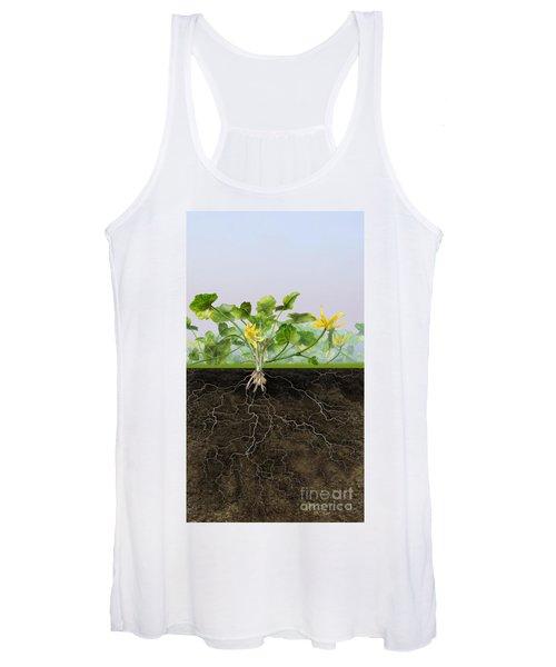 Pilewort Or Lesser Celandine Ranunculus Ficaria - Root System -  Women's Tank Top
