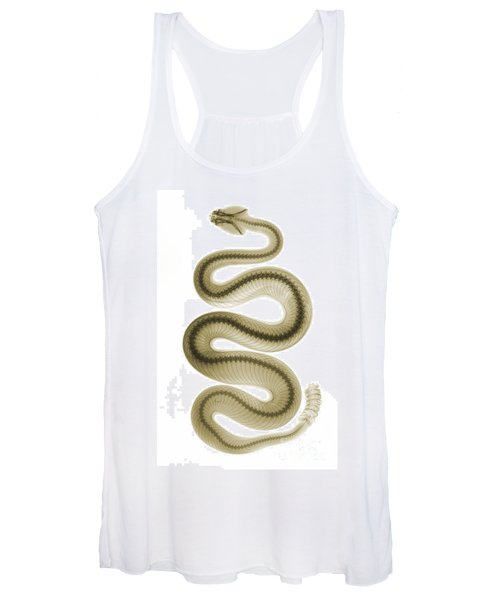 Southern Pacific Rattlesnake, X-ray Women's Tank Top