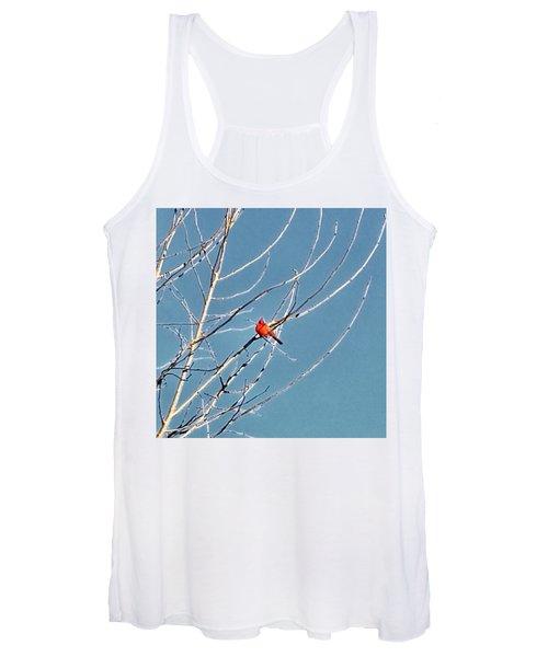 Winter Cardinal  Women's Tank Top