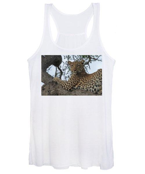 A Leopard Gazes From A Tree Women's Tank Top