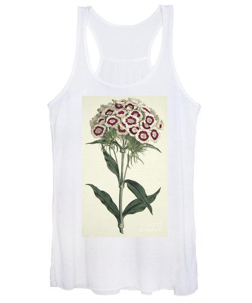 Dianthus Barbatus Bearded Pink Women's Tank Top