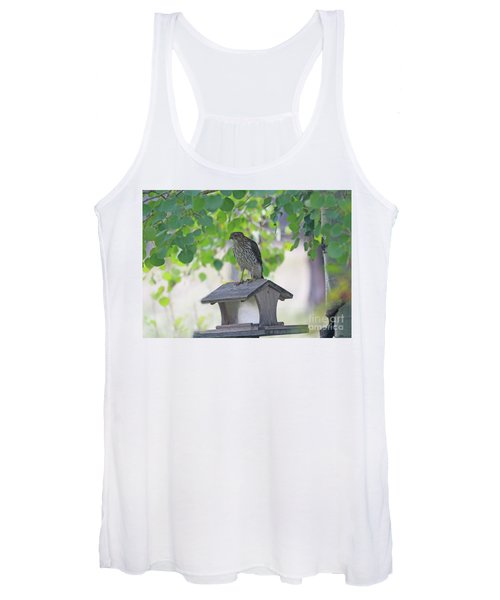Immature Cooper's Hawk Where Did All My Friends Go Women's Tank Top