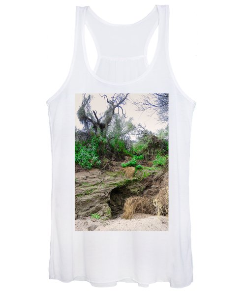 January Day  In The Vekol Wash Women's Tank Top