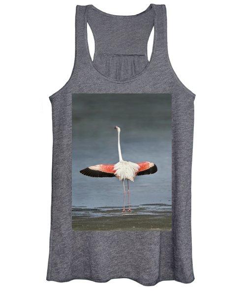 Greater Flamingo Phoenicopterus Roseus Women's Tank Top