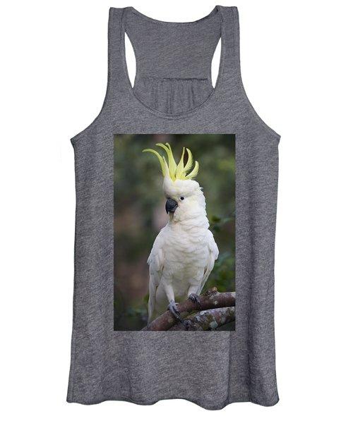 Sulphur-crested Cockatoo Displaying Women's Tank Top