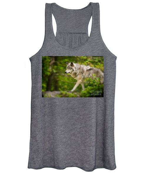 Timber Wolf Pictures Women's Tank Top