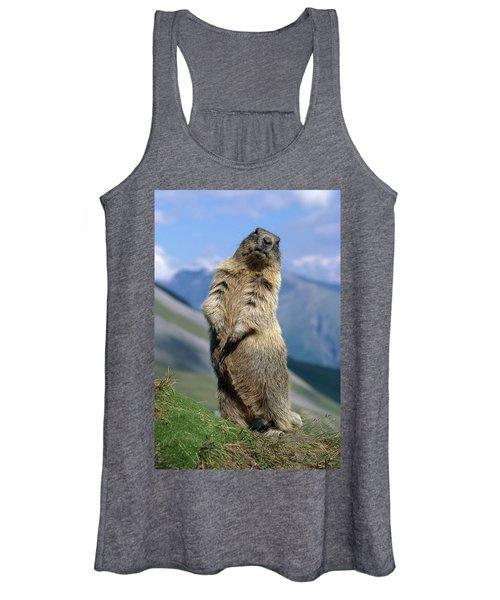 Alpine Marmot Sitting Up Women's Tank Top