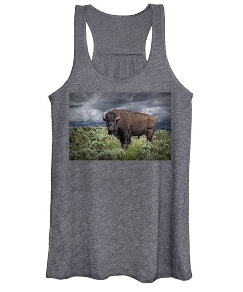 American Buffalo Or Bison In Yellowstone Women's Tank Top