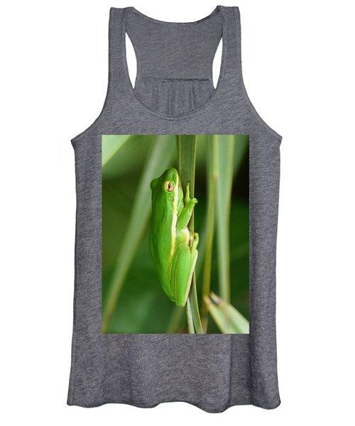 American Green Tree Frog Women's Tank Top