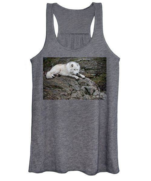 Arctic Wolf Pictures 1142 Women's Tank Top