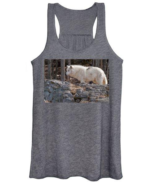 Arctic Wolf Pictures 525 Women's Tank Top