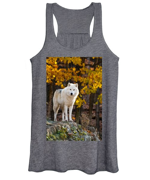 Arctic Wolf Pictures 709 Women's Tank Top