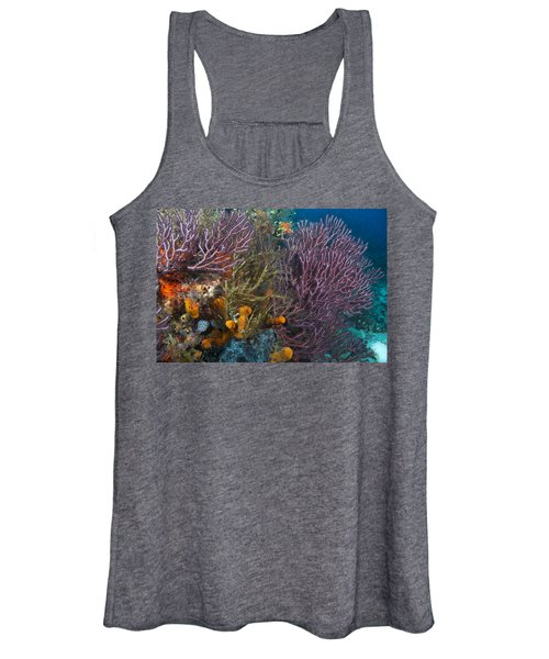 Colors Of Reefs Women's Tank Top