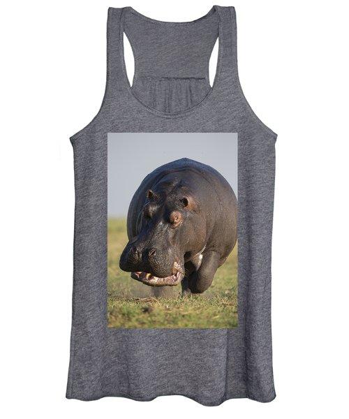 Hippopotamus Bull Charging Botswana Women's Tank Top