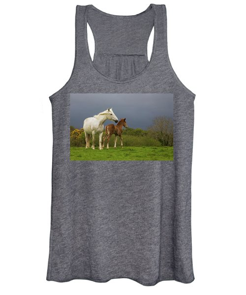 Mare And Foal, Co Derry, Ireland Women's Tank Top