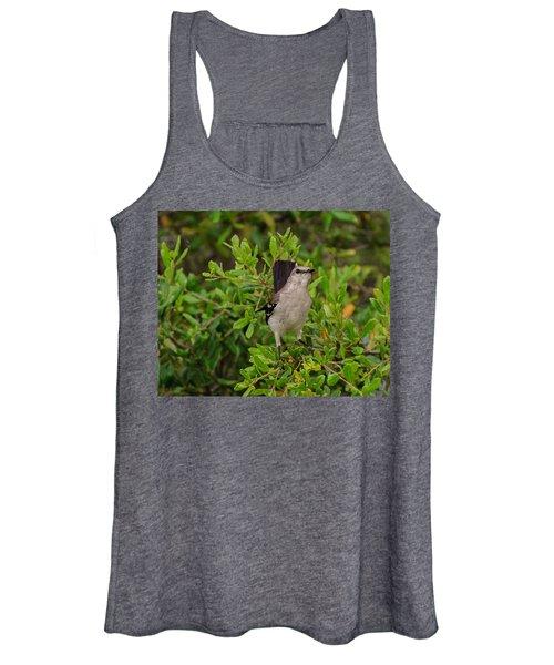 Mockingbird In Tree Women's Tank Top