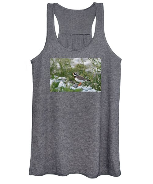 Ringed Plover On Rocky Shore Women's Tank Top