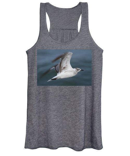 Seagull In Flight 12 Women's Tank Top